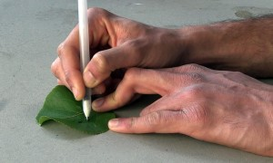 Smart Pens Can Draw Biosensors On Your Skin