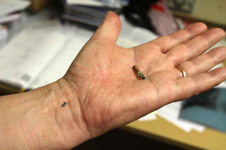 9. implanted RFID chips