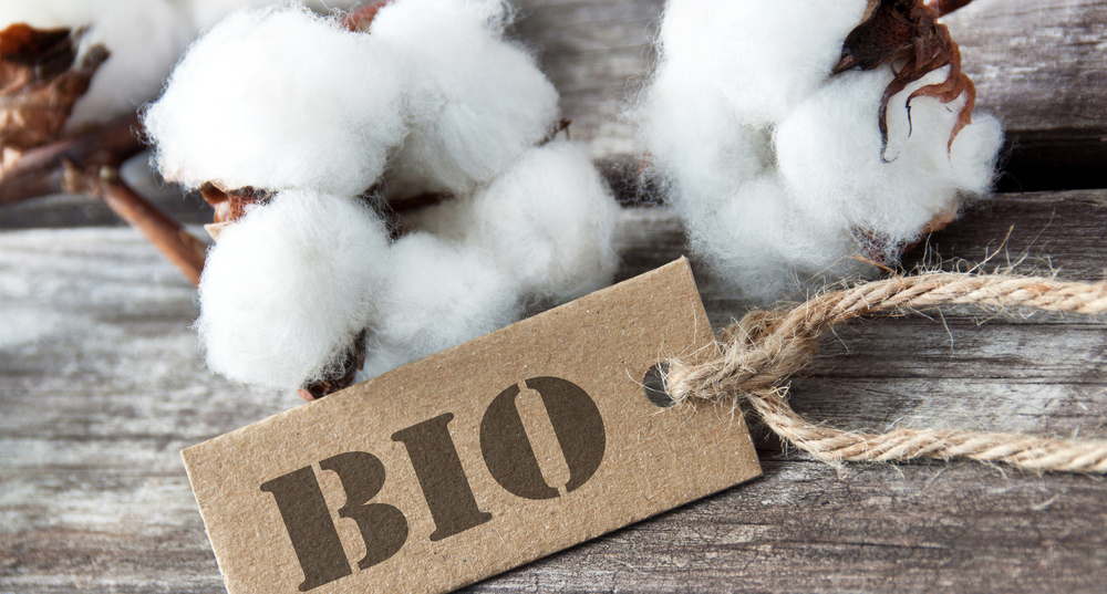 A branch of cotton with a BIO label in front of it.