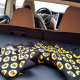 bitcoin in luxury - bitcoin-socks-in-a-tesla-car