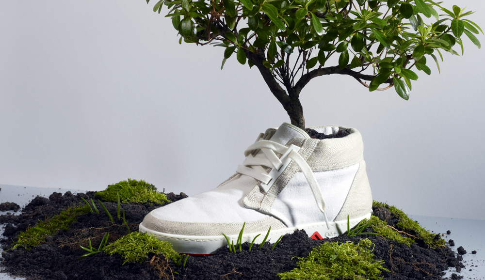Sustainable Fashion Influencers - white trainer made from sustainable materials with a tree growing inside
