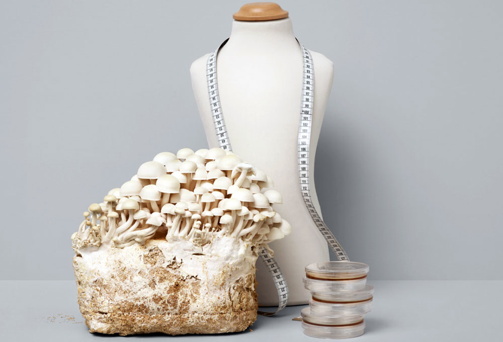 Positive Luxury - tailor mannequin next to a big bunch of mushrooms