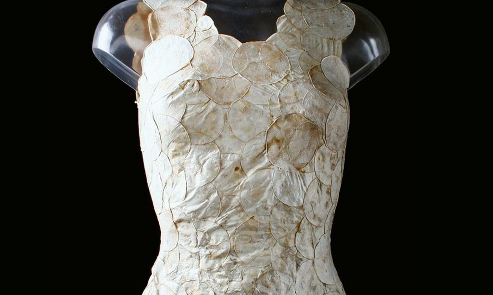 Sustainable Fashion Innovation - fungi textile dress