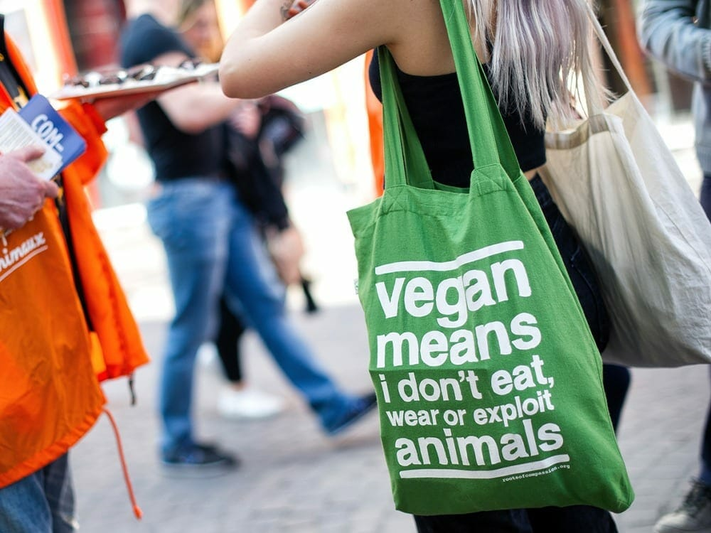 Vegan fashion movement is booming