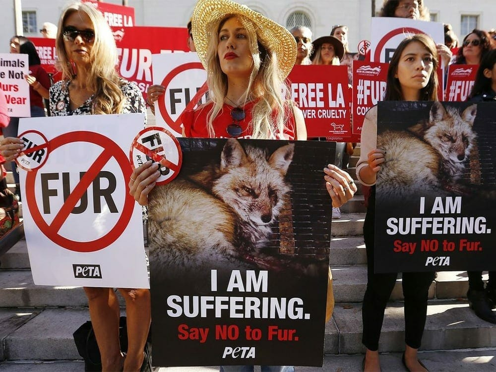 Towards vegan fashion - banning fur in LA