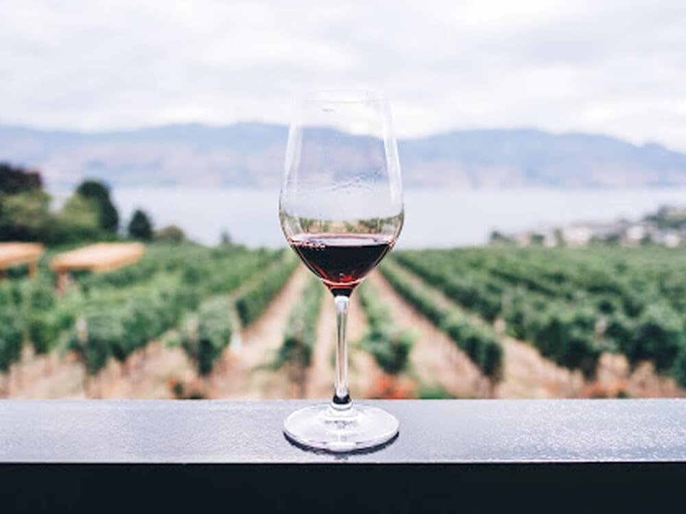 Organic Wine 3 Ways
