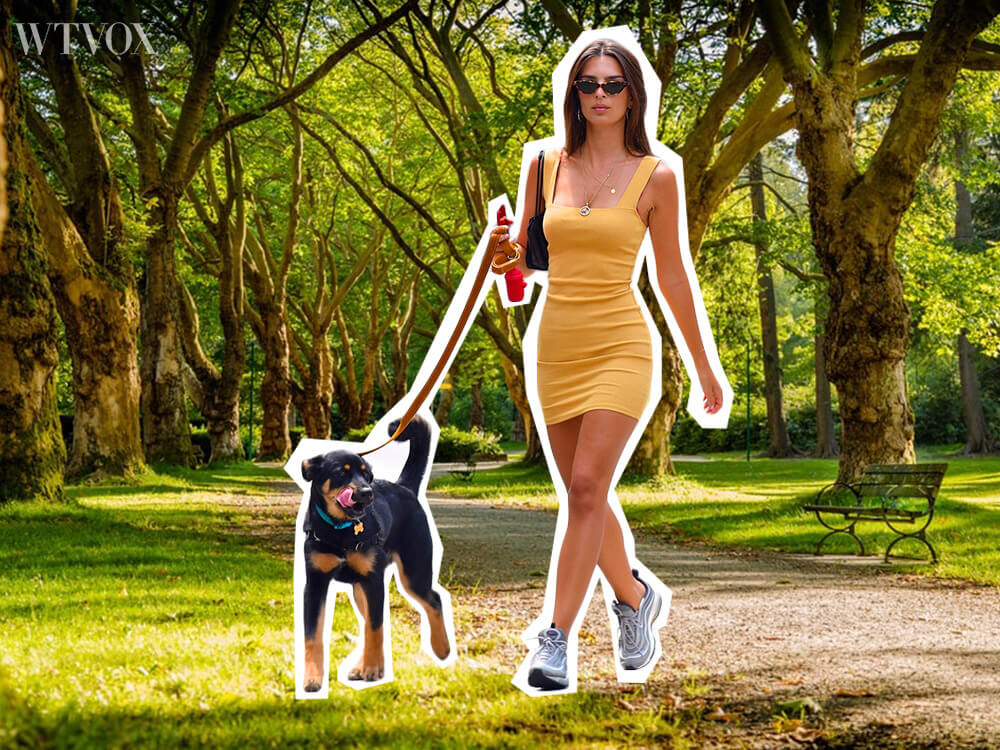 Take a walk with your dog during COVID-19