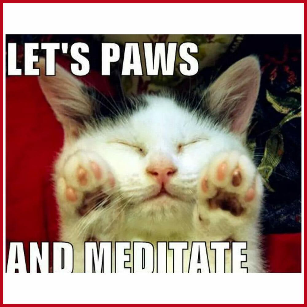 Meditation memes