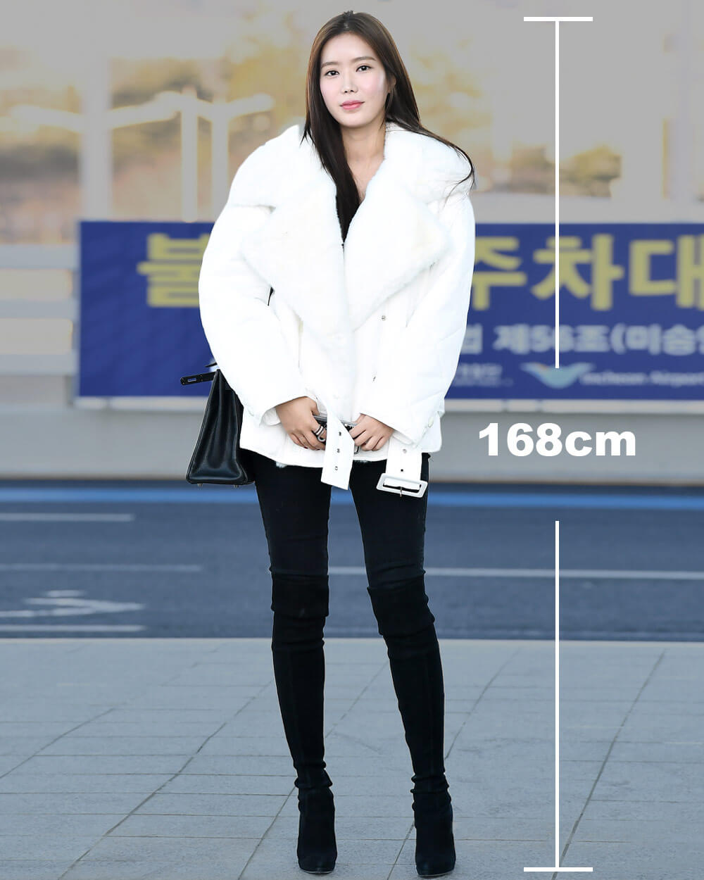 Korean Tall Beauty